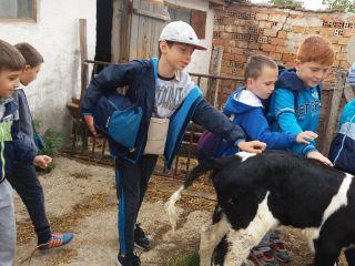 Посещение на ферма